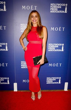 Sofia Vergara Evening Dress - Sofia Vergara put her fabulous curves on display in a body-con red mesh-panel dress by My Revolving Closet during the Hollywood Foreign Press Association's Grants Banquet.