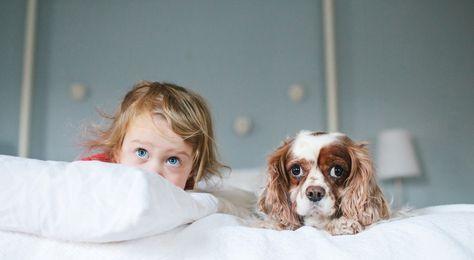 Reisetipps Urlaub Mit Kind Und Hund Kinder Tiere Kinder Schlafen Und Hunde