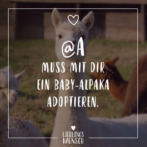 Visual Statements A Muss Mit Dir Ein Baby Alpaka Adoptieren