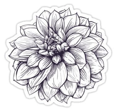 Pin By Emily Miyamoto On Stikers In 2020 Dahlia Flower Tattoos Flower Tattoo Vintage Flower Tattoo