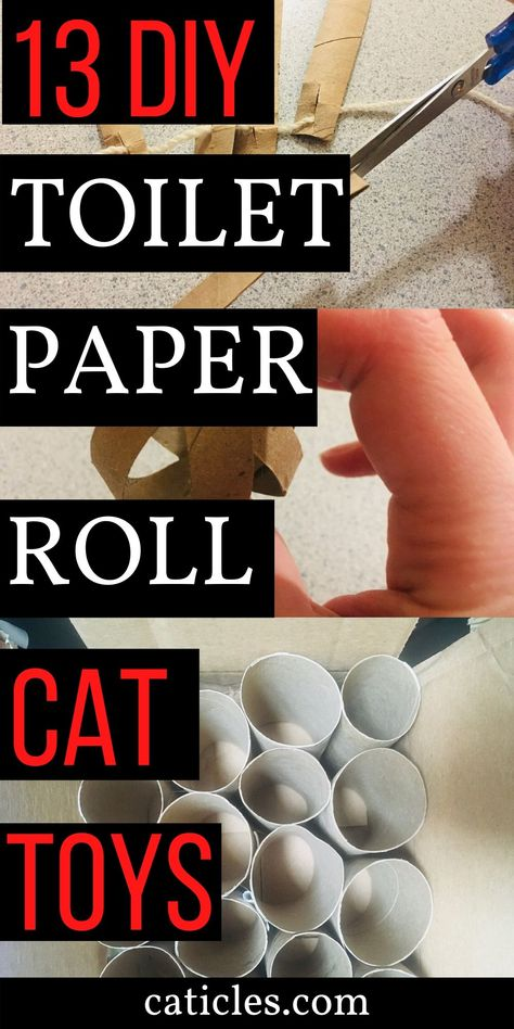 DIY cat toys are great and keep your cats busy for hours. These toilet paper roll toys are easy and fun to make. Cats love these toilet paper roll toys. Homemade Cat Toys, Diy Cat Toys, Simple Diy, Easy Diy, Kitten Toys, Kittens, Toilet Paper Roll Crafts, Diy Paper, Cat Toilet