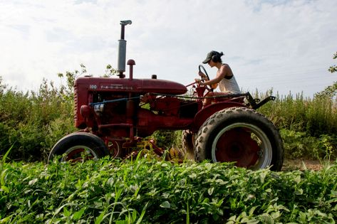 China's exit from US agriculture is a devastating blow to an already struggling sector