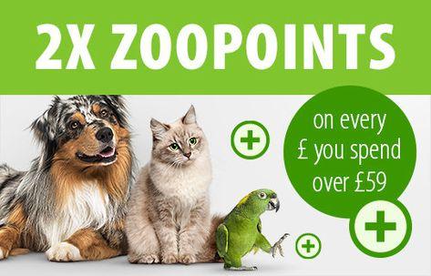 Pet Supplies At Zooplus Online Pet Shop Pet Food Pet Accessories In 2020 Cat Vet Wet Dog Food Dry Cat Food