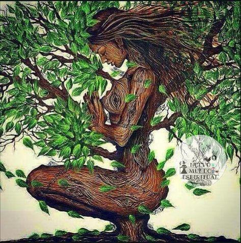 Nganga significa:misterio,alma,fuerza,poder, NATURALEZA🍃🌬️🍂🌾 .  #nuevo_mundo_espiritual #nganga #npemba #paleria #palerosencali…