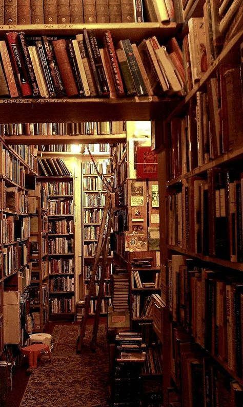 In a castle's library People really underestimate the power reading can do for you & your life!