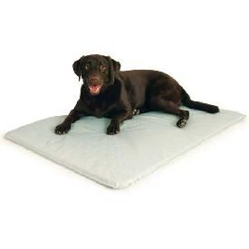 Cooling Dog Bed Need For Duke Cool Dog Beds Pet Beds Cool Pets