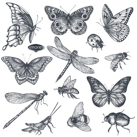 Vector insects and wildflowes set by Fancy art on Cute Tattoos, Small Tattoos, Pretty Tattoos, Tattoos For Women, Tattoos For Guys, Wildflower Drawing, Wildflower Tattoo, Bug Tattoo, Moth Tattoo