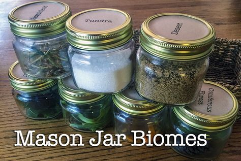 Mason jar biomes! For Classical Conversations science, Cycle 2, Week 1.