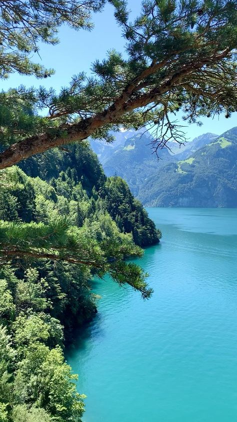 Gorgeous Lake Uri, Switzerland 🇨🇭