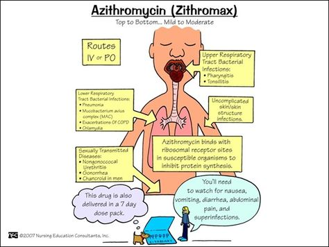 Azithromycin Zithromax Pharmacology Nursing Pharmacology