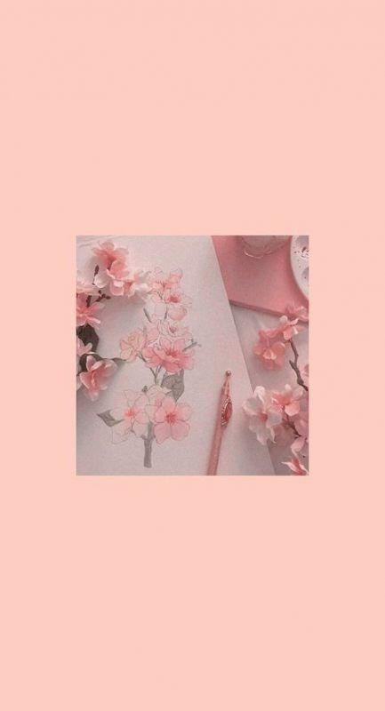55 Ideas Soft Pink Aesthetic Wallpaper Iphone Wallpaper