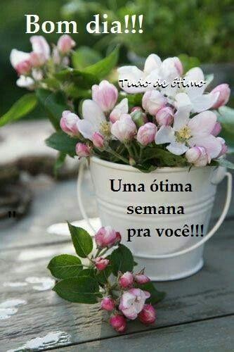 Bomdia Felizsemana Com Imagens Flores Bonitas Amor Flores