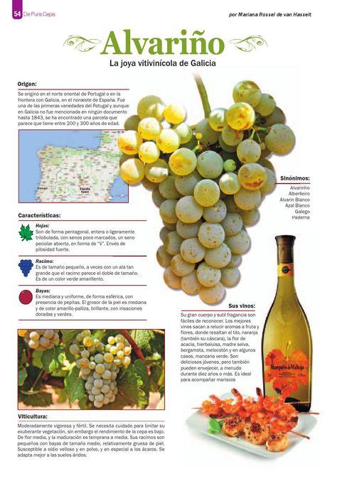 Vinos, Piscos, Gastronomia, Licores, Cultura, Viajes, Lujo y más...