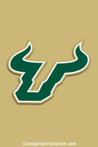 university of south florida bulls south florida  usf essay prompt university of south florida essay