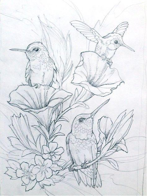 Bergsman Vogel Malvorlagen Ausmalbilder Tiere Zeichnen
