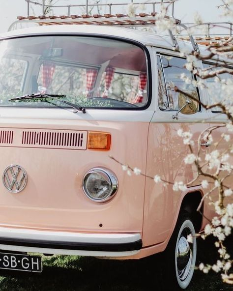 Photo Wall Collage, Picture Wall, Aesthetic Photo, Aesthetic Pictures, Aesthetic Backgrounds, Aesthetic Wallpapers, Wolkswagen Van, Vw Caravan, Photo Polaroid