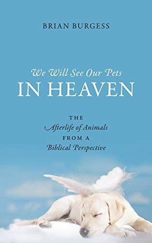 Pin On Pets In Heaven