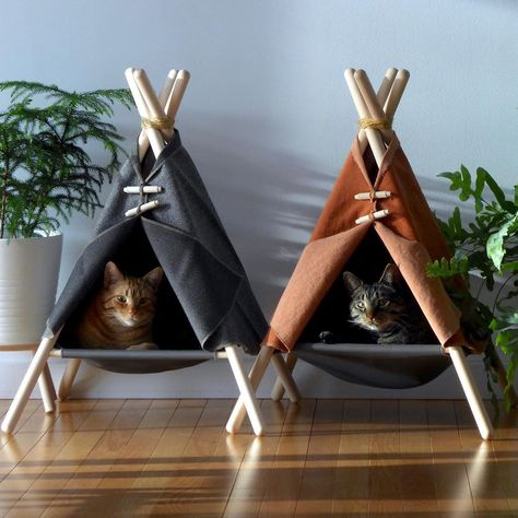 "Product on Instagram: ""Adventure Tent Cat Bed by Tinker. #p_roduct • #product #design #productdesign #furniture #cat #cats #catsofinstagram #catstagram #instacat…"""