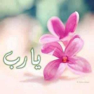رمزيات مكتوب عليها يا رب للواتس اب صور رمزيات يا الله للأنستقرام والفيسبوك Floral Rings Islamic Art Flowers