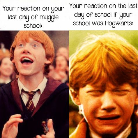 So accurate shared by @battleofhogwarts on We Heart It