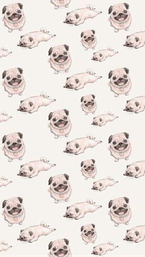 W Unas Oalabras Pugssss Pug Wallpaper Dog Wallpaper