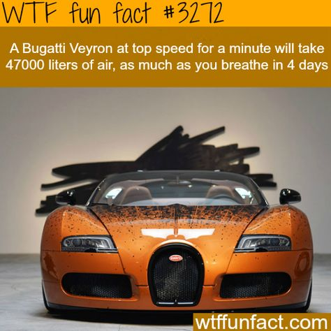 This Bugatti Veyron Grand Sport Features Scientific Formulas And  Mathematical Paintings. | Hot Wheels | Pinterest | Bugatti Veyron, Car Wrap  And Cars