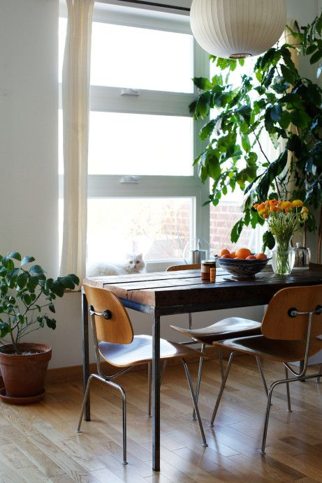 Created by charles ray eames in dcm chairs dining chair metal makes wonders of designers architects to use in dining living