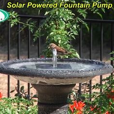This fountain kit makes an affordable and efficient pump that requires no electricity or batteries, as it runs on solar power alone!