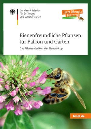 Cover Of The Brochure 39 Bee Friendly Plants For Balconies And Gardens The Cover Of The Brochure Bee Friendly Plants Miniature Garden Balcony Plants