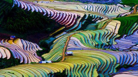 Asia Cuando La Naturaleza Se Convierte En Arte