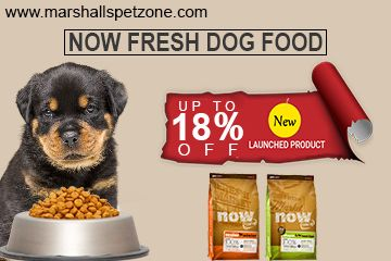 Now Fresh Grain Free Dog Food Comes In Assorted Flavors And Best