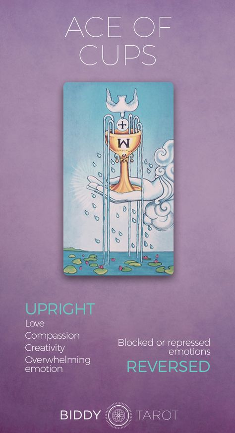 Ace of Cups Meaning - Get the detailed description at BiddyTarot.com.    ace of cups, tarot card ace of cups, ace of cups meaning, ace of cups reversed, ace of cups upright, tarot card meanings ace of cups  #aceofcups #tarotaceofcups