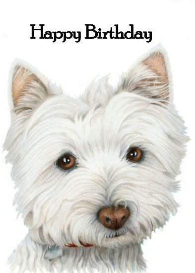 83e1ffb2ee7e3dfedb6614a92e4066e1 grandkids westie pin by anna on westie ❤ pinterest westies, dog and animal