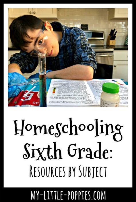 Sixth Grade Science, Teaching 6th Grade, 6th Grade Reading, Science Curriculum, Homeschool Curriculum, Homeschooling, Ninth Grade, Seventh Grade, Fourth Grade