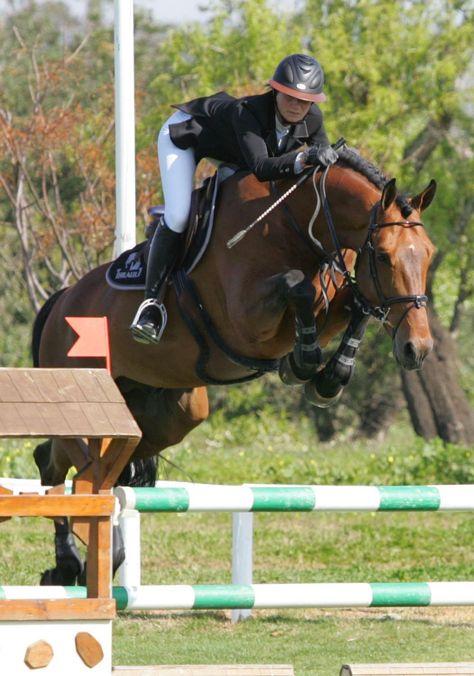 503 Service Temporarily Unavailable Penelope Leprevost Saut D Obstacles Vetements Equestres