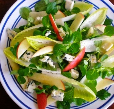 http://mousehousekitchen.wordpress.com/2012/06/29/dive-into-endive/