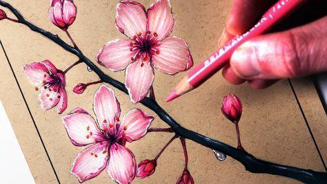 How To Draw Cherry Blossoms Cherry Blossom Drawing Flower Drawing Tutorials Flower Drawing