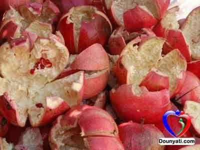فوائد قشر الرمان Pomegranate Peel Health Remedies Healthy Holistic Living