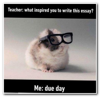 essay #essayuniversity persuasive writing examples for kids