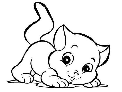 Gato 1 Jpg 559 425 Con Imagenes Gatito Para Colorear Gatos