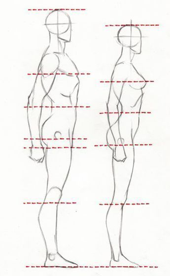 Exceptional Drawing The Human Figure Ideas. Staggering Drawing The Human Figure Ideas. Drawing Body Proportions, Human Body Drawing, Body Reference Drawing, Human Figure Drawing, Drawing Male Bodies, Proportion Art, Figure Drawing Tutorial, Male Drawing, Human Body Art