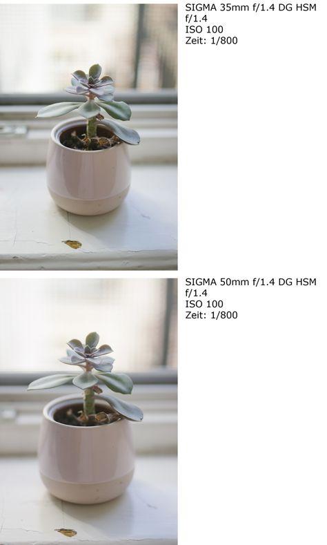 18 Comparison Sigma 35mm Dg F 1 4 Art Vs Sigma 50mm Dg Hsm F 1 4 Ideen Luftikus