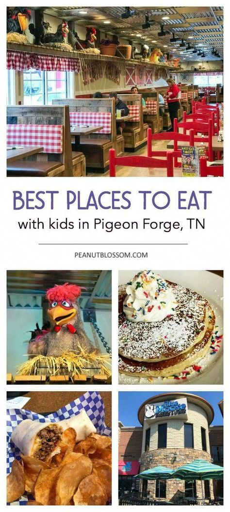 Best places to eat in Pigeon Forge Tennessee with kids. Along with 35 Pigeon Forge things to do. The best attractions to see and activities for families. Plan a fun family vacation in Pigeon Forge this year! Best Family Vacations, Mountain Vacations, Family Travel, Dream Vacations, Pigeon Forge Attractions, Gatlinburg Vacation, Gatlinburg Tn, Gatlinburg Tennessee Attractions, Thing 1