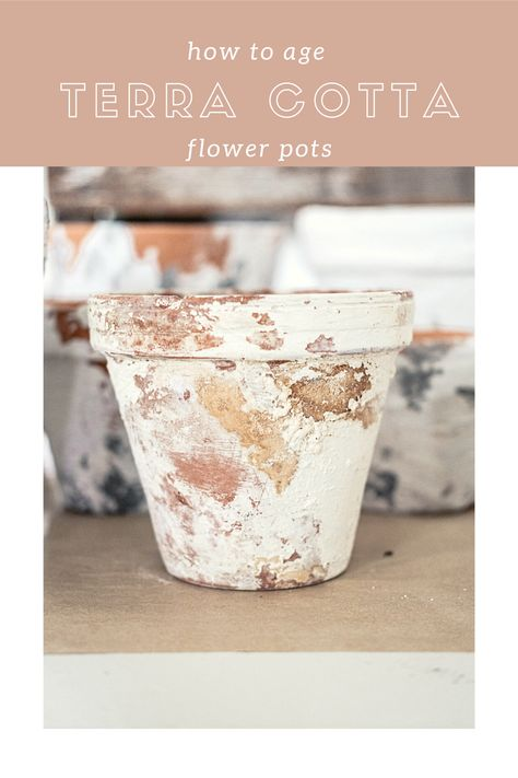 Terracotta Paint, Terracotta Flower Pots, Home Crafts, Crafts To Make, French Flowers, Art Deco Furniture, Do It Yourself Home, Clay Pots, Terra Cotta