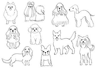 Group Of Small Dogs Hand Drawn Dog Line Art Animal Line