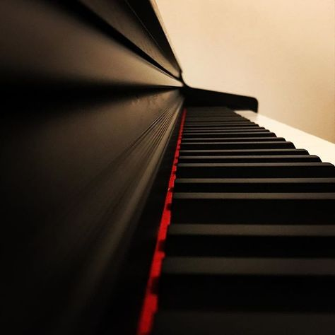 elkedageenfoto P -> Piano #something...