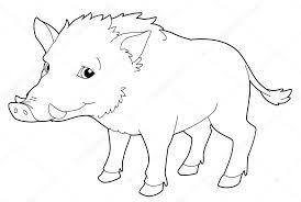 Resultado De Imagen Para Dibujos De Jabali Cartoon Animals