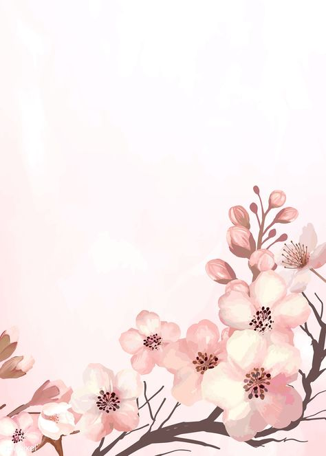 Hand drawn cherry blossoms on a pink background vector | premium image by rawpixel.com