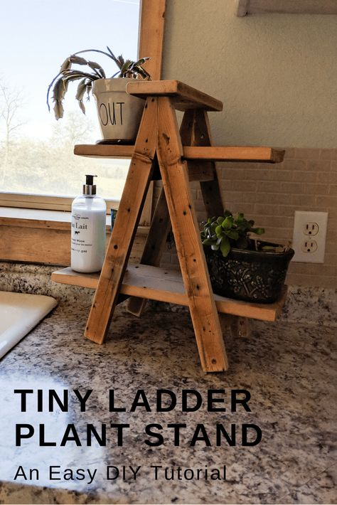 Tiny Ladder Plant Stand – My Happy Simple Living Small ladder plant stand diy tutorial. This easy diy ladder plant stand tutorial is simple and great for anyone with wood scraps to use up. Wood Projects For Beginners, Scrap Wood Projects, Easy Woodworking Projects, Woodworking Tools, Diy Outdoor Wood Projects, Easy Small Wood Projects, Scrap Wood Crafts, Woodworking Magazines, Woodworking Apron