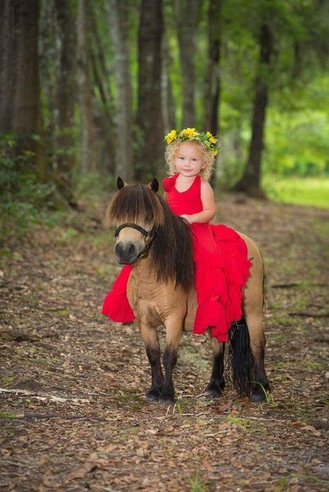 Girl in red dress on small horse | 12 Horse Photos of the Week